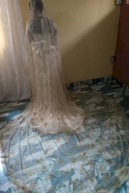 Champagne Wedding Veil